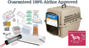 All in one Airline Approved Carrier Package