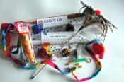 Kats'n Us Deluxe Cat Toy Kit