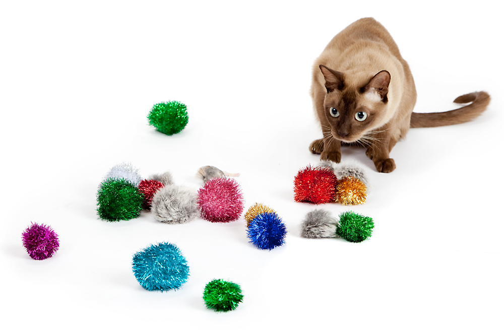 Cat Toys Balls : Choosing the right sparkle ball cat toy for your